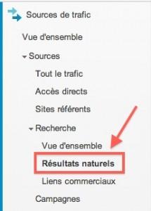 google analytics source de trafic resultats naturels