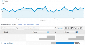 google analytics not provided keyword 100%